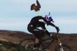مسابقه دوچرخه سوار و عقاب