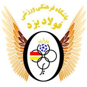 امتیاز فولاد یزد واگذار شد