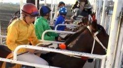 حواشی مسابقات اسب سواری در گنبد
