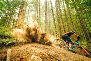 مسابقه جالب دوچرخه سواری در جنگل