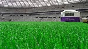 ورود علم به چمن استادیومها و تولید چمن هیبریدی
