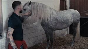 اسب سرخیو راموس به قهرمانی جهان رسید