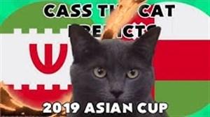 پیش بینی گربه پیشگو از برنده بازی ایران - عمان