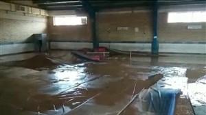 وضعیت خانه کشتی پلدختر پس از سیل اخیر
