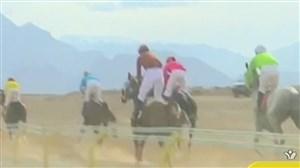رکوردشکنی کورس اسب دوانی در یزد