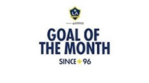 گل زلاتان ابراهیموویچ برترین گل ماه لس آنجلس گلکسی