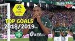 3 گل برتر سن آتین در لوشامپیونه فرانسه فصل 19-2018