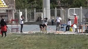 سی و سومین دوره مسابقات دو ومیدانی قهرمانی معلولین کشور