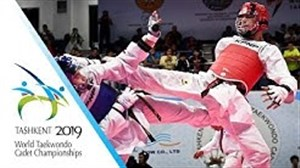 کسب مدال طلای وزن 61- کیلو توسط ابوالفضل عباسی