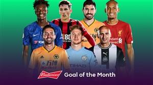 نامزدهای بهترین گل ماه نوامبر لیگ برتر انگلیس