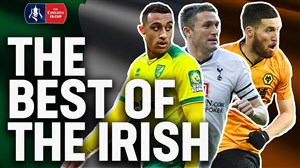 بهترین بازیکنان ایرلندی جام حذفی انگلیس