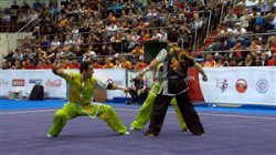 نگاهی به اجرای طلایی تیم دوئلین ووشو ایران درسال 2017