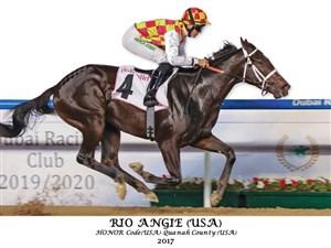 مروارید سیاه با اسبهای سرعتی مسابقه می دهد